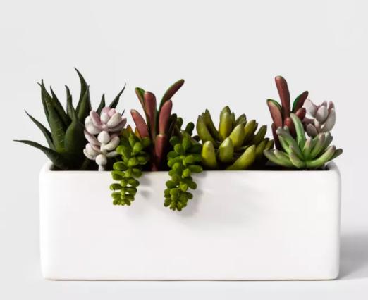 target fake faux succulent plants