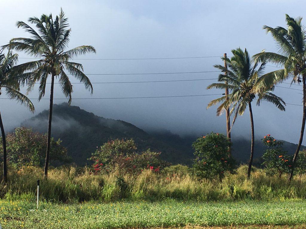 maui tropical plantation, maui tropical plantation tour