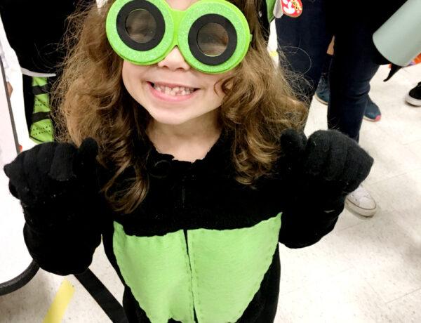 beanie boo cat halloween costume